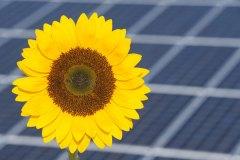 energiewende-nicht-mit-fragwuerdigen-gebuehren-abmurksen