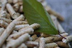 pelletsbranche-spuert-wachsende-nachfrage