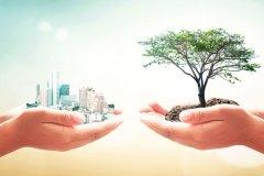 verein-fuer-nachhaltiges-bauen-ist-gegruendet