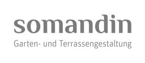 logo-somandin.jpg
