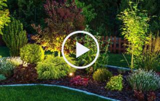 Videos rund um den Garten