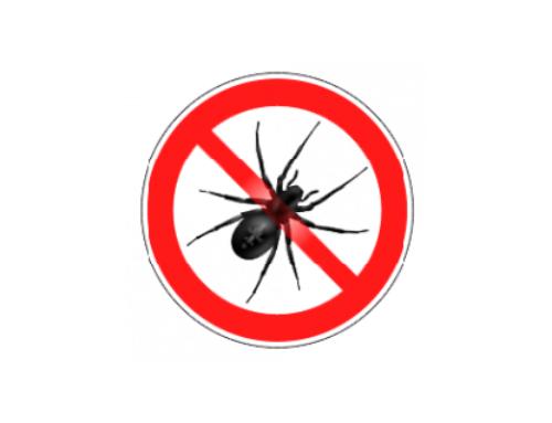 Ihre Experten in der Schädlingsbekämpfung und -vorbeugung