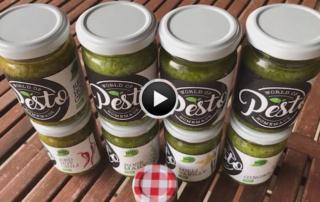 World of Pesto