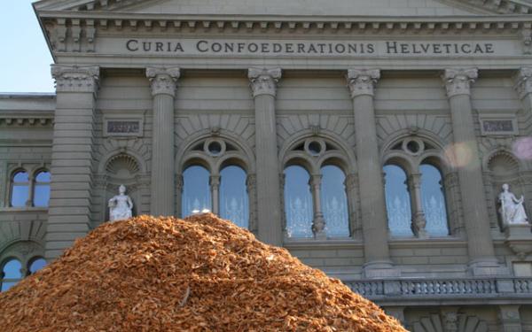 40 Jahre Holzenergie Schweiz – eine Erfolgsgeschichte