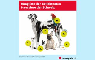 Fast jeder zweite Schweizer hält ein Haustier