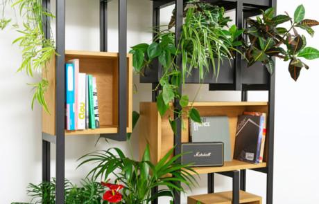 HP 1: Trennwand, Pflanzengefäss, Bücherregal und raumbildende Struktur