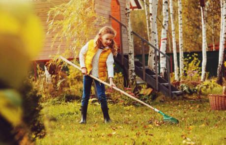 So wird der Rasen winterfit