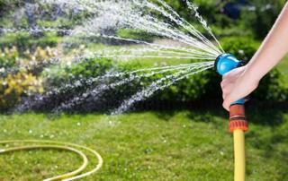 Bewässern – aber richtig!