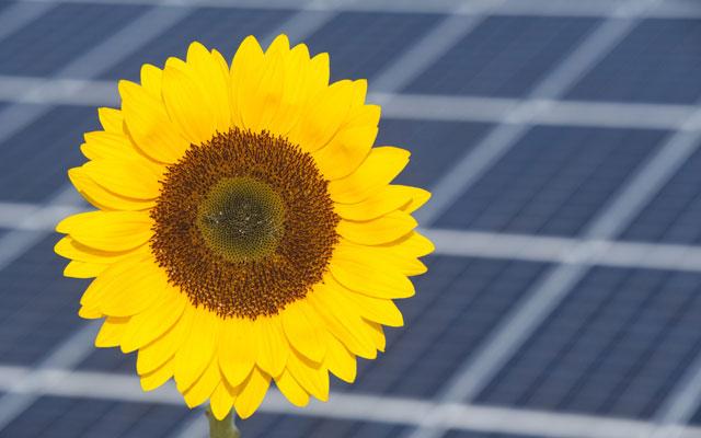 Energiewende nicht mit fragwürdigen Gebühren abmurksen