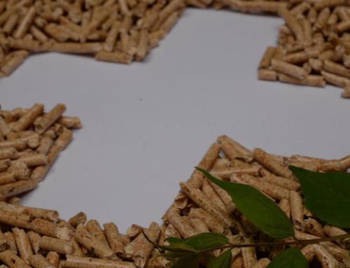 Rekord in der Schweizer Holzpellet-Produktion