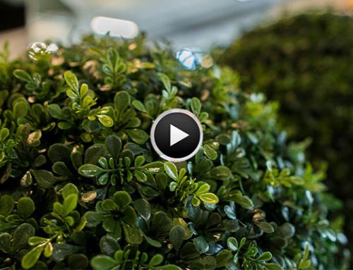 Sonderausstellung Garten 2020 Standinterview Dekohaus AG