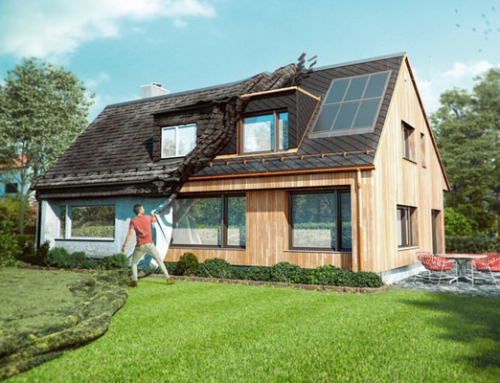 Förderung spart im Schweizer Gebäudepark 5,4 Mia. kWh und 1,2 Mio. t CO2 ein