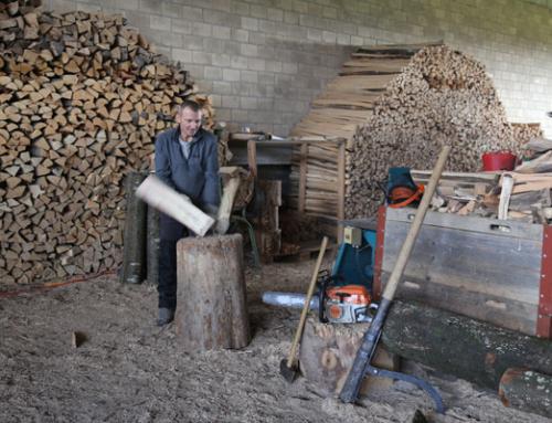 Schweizer Energieholznutzung 2019 auf Höchststand