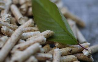 Pelletsbranche spürt wachsende Nachfrage