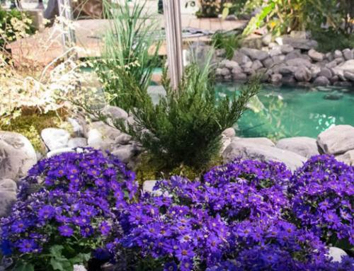 WOHGA 2022 – Der Treffpunkt für Wohnen, Haus und Garten