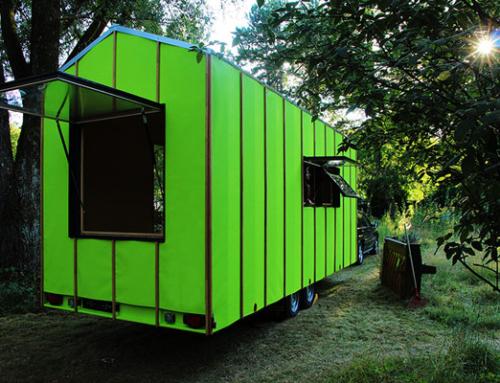 Tiny House Immergrün