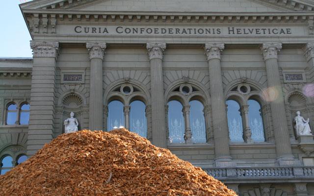 Politik fordert vermehrte Nutzung der Holzenergie