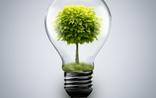 60 Prozent des Stroms aus Steckdosen