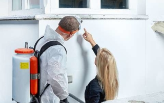 So sorgen Sie für trockene Hauswände