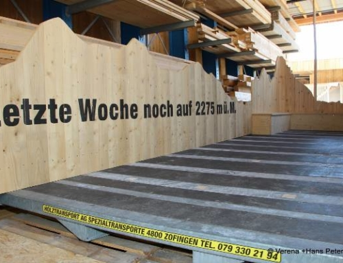 20 Jahre Beer Holzbau (2019)