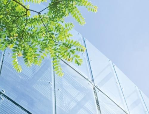 Berufsreform Fachfrau/Fachmann für Wärmesysteme – Branchennachwuchs
