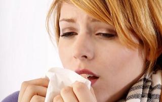 Pflanzen gegen Erkältungen