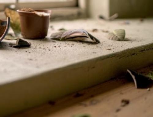 Versicherung beim Umzug: Wer haftet für Schäden?