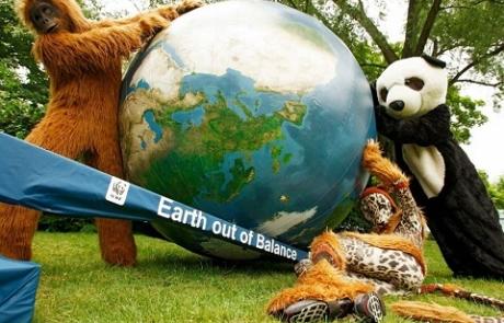 WWF-Bericht - 2,4 Millionen Quadratkilometer globaler Waldverlust seit 1990